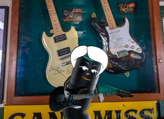 Alexa in front of signed Led Zeppelin and Pink Floyd Guitars