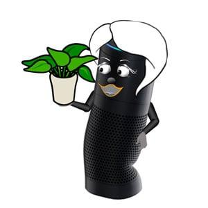 Amazon Alexa holding a small plant