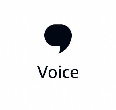 Alexa Routines Activations - Voice Icon